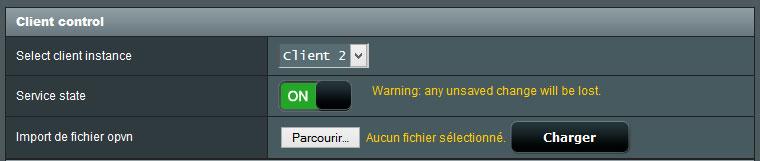 Section des paramètre de contrôle du client VPN